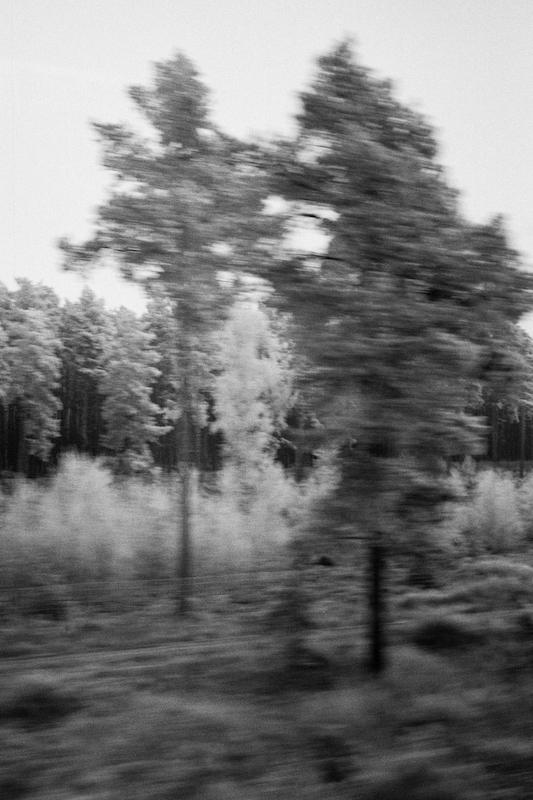 winterbaume_2008-sw002_chm400320-20080107-20080107194731.jpg