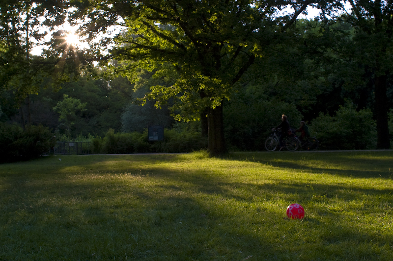 roter_ball_auf_wiese_im_tiergarten-crw_8464.jpg
